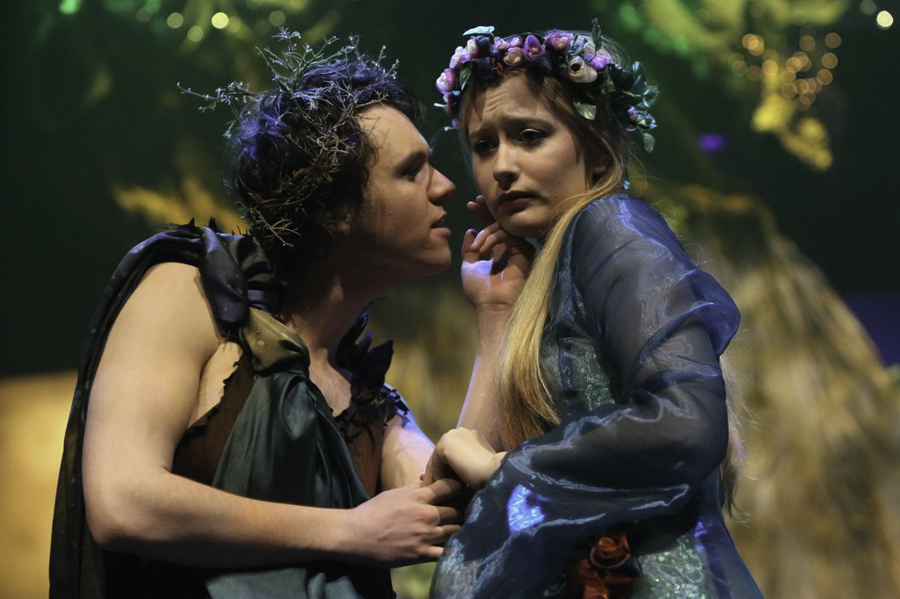 What seems to be the main conflict in the A Midsummer Night's Dream?