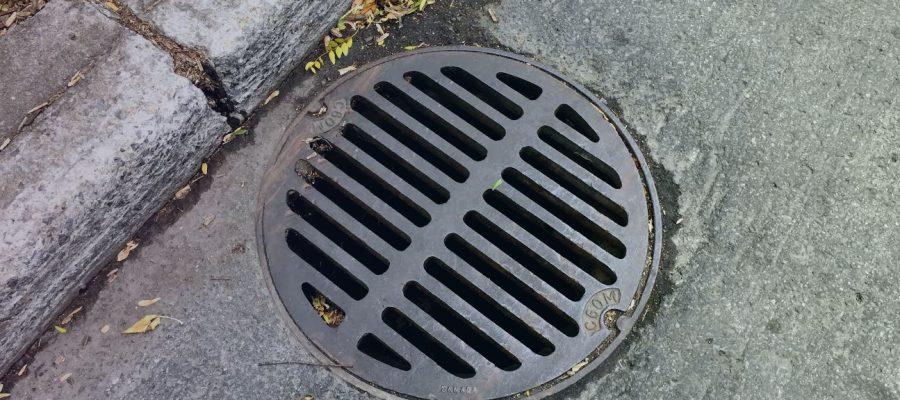 COMMENTARY_Sewage_WEB
