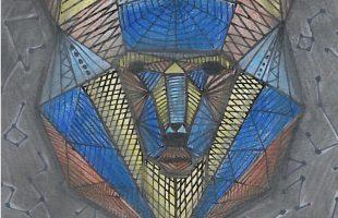 bear-illustration