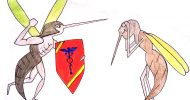 scitech_mosquitoes_mariya_voloshyn_web